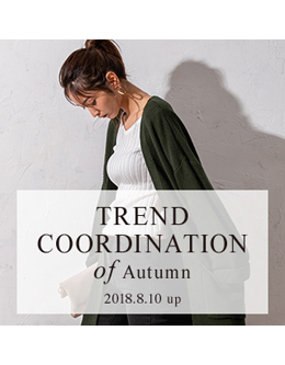 fifth trend coodination of Autumn 2018 2