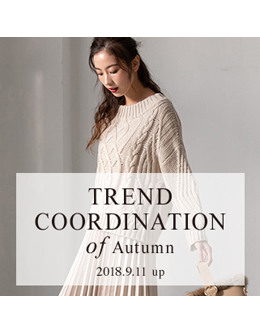 fifth trend coodination of Autumn 2018 3