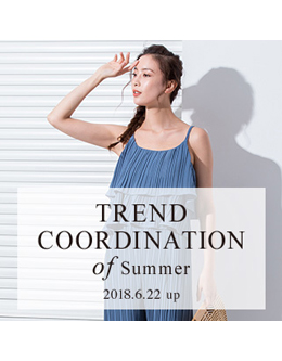 fifth trend coodination of summer 2018 4