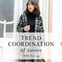 fifth trend coodination of Autumn 2018 4