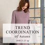 fifth trend coodination of Autumn 2018 7