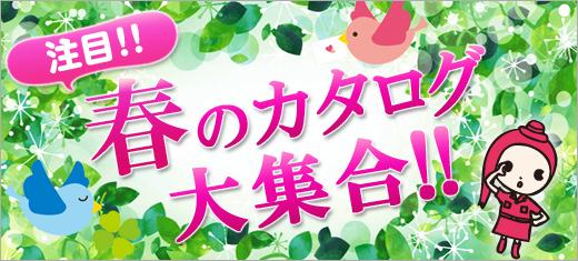 注目!春のカタログ大集合!!