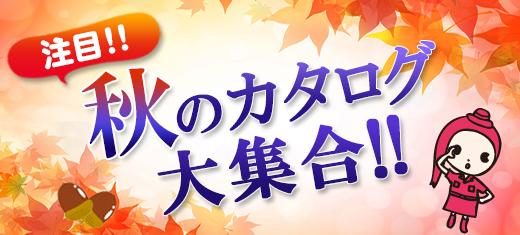 注目!秋のカタログ大集合!!